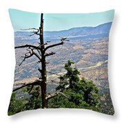 A Time To Die Throw Pillow