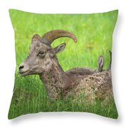 A Time To Rest Throw Pillow