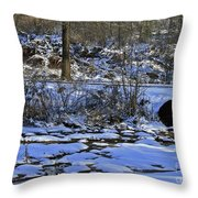 A Time To Thaw Throw Pillow