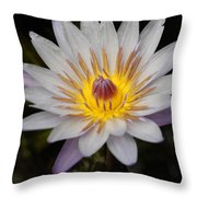 A Tinge Of Purple Throw Pillow