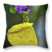 A Touch Of Beauty Throw Pillow
