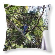 A Touch Of Blue 2 Throw Pillow
