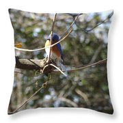 A Touch Of Blue 5 Throw Pillow