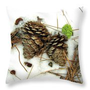 A Touch Of Moss Throw Pillow