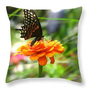A Touch Of Summer's End Throw Pillow