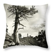 A Tough Life Throw Pillow