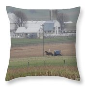 A Tranquil Spring Pause Throw Pillow