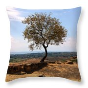 A Tree And A Rock Throw Pillow