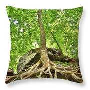 A Tree And It's Roots Throw Pillow
