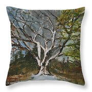 A Tree For All Seasons  Throw Pillow