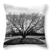 A Tree In Fort Worth Throw Pillow