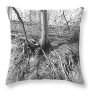 A Tree In Shiawassee Park, Living On The Edge Throw Pillow