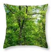 A Tree In The Woods At The Hacienda  Throw Pillow