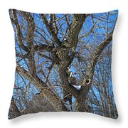 A Tree In Winter- Vertical Throw Pillow