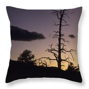 A Tree Is Silhouetted By The Setting Throw Pillow