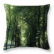 A Tree Lined Path Leads To Mad King Throw Pillow