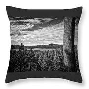 A Tree Stands Guard Over Big Bear Lake Throw Pillow