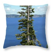 A Tree With A View Throw Pillow by Methune Hively