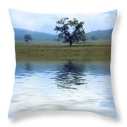 A Trees  Reflection Throw Pillow