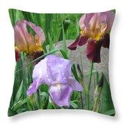 A Trios Of Irises Throw Pillow
