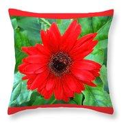 A True Red Throw Pillow