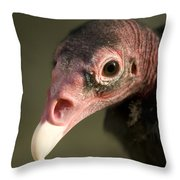 A Turkey Vulture At The Henry Doorly Throw Pillow