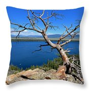 A Twisted View Throw Pillow