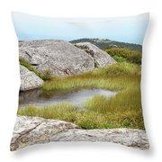 A Vernal Pool Atop A Subalpine Granite Balds Throw Pillow