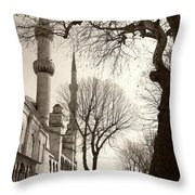 A View From Blue Mosque Throw Pillow