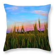 A View From Crop Level Throw Pillow