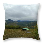 A View From The Top Of The Temple Of The Sun Throw Pillow