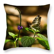 A  View Of A Butterfly Throw Pillow