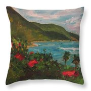 A View Of Carambola Throw Pillow