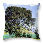 A View Of Lake Brienz From Bodeli Throw Pillow