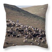 A View Of Sheep In The Judean Desert Throw Pillow