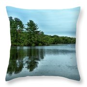 A View Of The Lake Throw Pillow