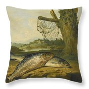 A View On The River Derwent At Belper Derbyshire With A Salmon And A Grayling On The Bank Throw Pillow