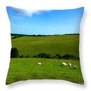 A View Over Exmoor 2 Throw Pillow