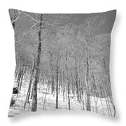 A View Through The Woods Throw Pillow