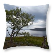 A View To The Arctic Sea Throw Pillow