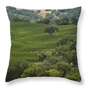 A Vineyard In The Anderson Valley Throw Pillow by Richard Nowitz