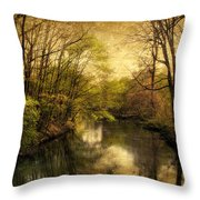 A Vintage Spring Throw Pillow