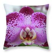 A Violet Orchid Throw Pillow
