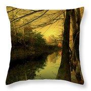 A Vision Of Autumn Throw Pillow