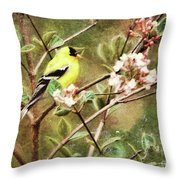A Vision Of Spring Throw Pillow