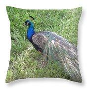 a Visit by Blue Throw Pillow