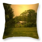 A Walk In Country Throw Pillow