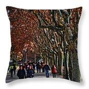 A Walk In The Park - Valencia Throw Pillow