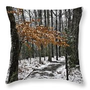A Walk In The Snow Quantico National Cemetery Throw Pillow
