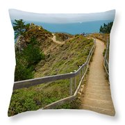 A Walk In The Wind Throw Pillow